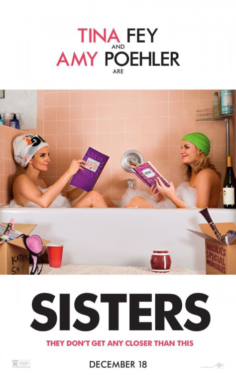 sisters-movie-2015-poster